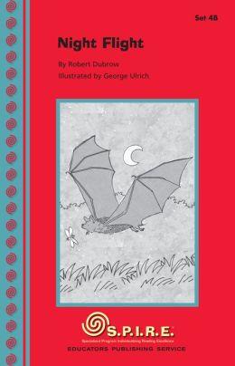 SPIRE Decodable Readers, Set 4B: Night Flight