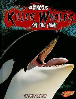 Killer Whales: On the Hunt