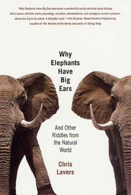 Why Elephants Have Big Ears: Understanding Patterns of Life on Earth