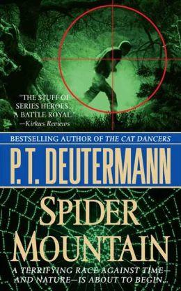 Spider Mountain: A Novel