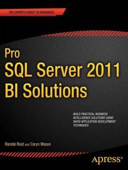 Pro SQL Server 2012 BI Solutions