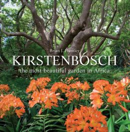 Kirstenbosch: The Most Beautiful Garden in Africa