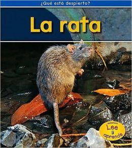 La rata (Rats)