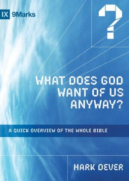 What Does God Want of Us Anyway?: A Quick Overview of the Whole Bible (IXMarks Series)