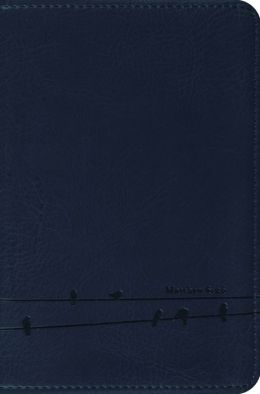 ESV Compact Bible (TruTone, Slate, Birds Design)