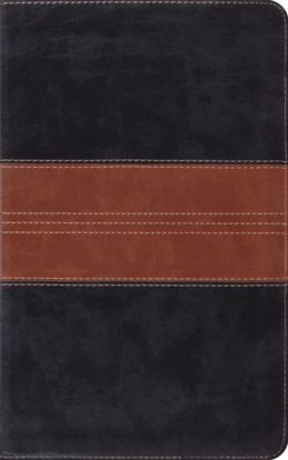ESV Thinline Bible (TruTone, Black/Tan, Trail Design)