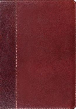 ESV Study Bible (Cowhide, Brown/Chestnut, Timeless Design)