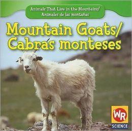 Mountain Goats/Cabra montes