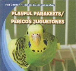 Playful Parakeets / Pericos juguetones