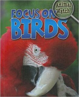Focus on Birds