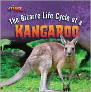 The Bizarre Life Cycle of a Kangaroo