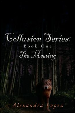 Collusion Series: Book One: The Meeting