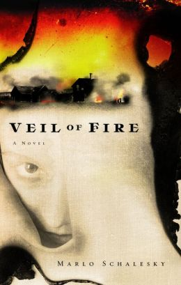 Veil of Fire: A Novel