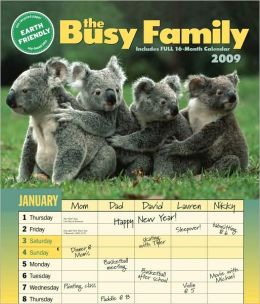 2009 Busy Family Wall Calendar