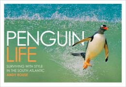 Penguin Life: Surviving with Style in the South Atlantic