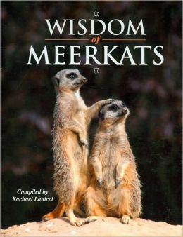 Wisdom of Meerkats