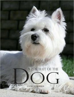 A Portrait of the Dog