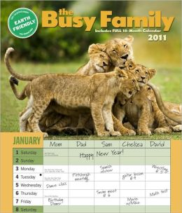 2011 Busy Family Wall Calendar
