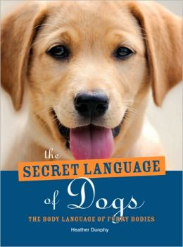The Secret Language of Dogs: The Body Language of Furry Bodies