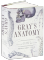 Gray's Anatomy: Classic Illustrated Edition