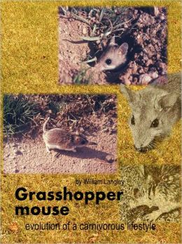 Grasshopper Mouse: Evolution of a Carnivorous Life Style