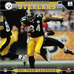 2011 Pittsburgh Steelers Mini Wall