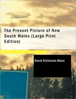 The Present Picture Of New South Wales (Large Print Edition)