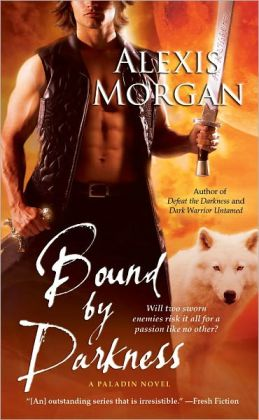 Bound by Darkness (Paladin Series #7)