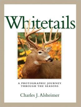 Whitetails: A Photographic Journey Through the Seasons (PagePerfect NOOK Book)