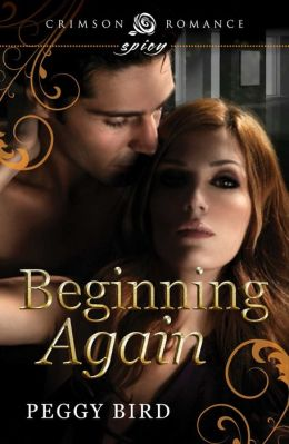 Beginning Again: Book 1 in the Second Chances series