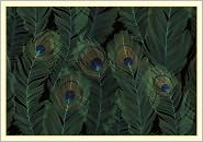 Peacock Feathers Boxed Note Card Set of 14