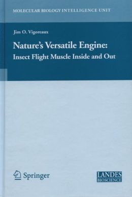Nature's Versatile Engine: Insect Flight Muscle Inside and Out