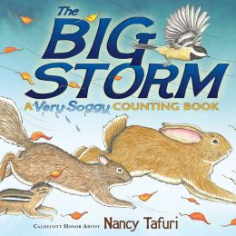 The Big Storm: A Very Soggy Counting Book (with audio recording)
