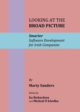 Looking at the Broad Picture: Smarter Software Development for Irish Companies