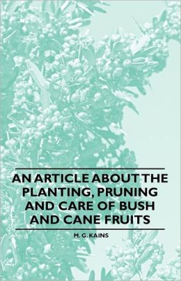 An Article About The Planting, Pruning And Care Of Bush And Cane Fruits