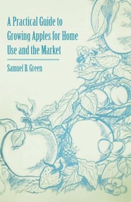 A Practical Guide To Growing Apples For Home Use And The Market