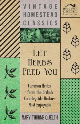 Let Herbs Feed You - Common Herbs from the British Countryside that are most Enjoyable