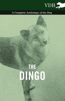 The Dingo - A Complete Anthology of the Dog -