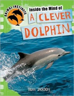 Inside the Mind of a Clever Dolphin