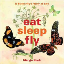 Eat Sleep Fly Little Gift Book