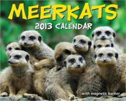 2013 Meerkats Mini Box Calendar