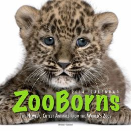 2014 ZooBorns Wall Calendar