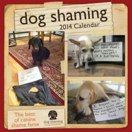 2014 Dog Shaming Wall Calendar