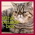 Book Cover Image. Title: Stink Outside the Box:  Life Advice from Kitty, Author: Jeremy Greenberg