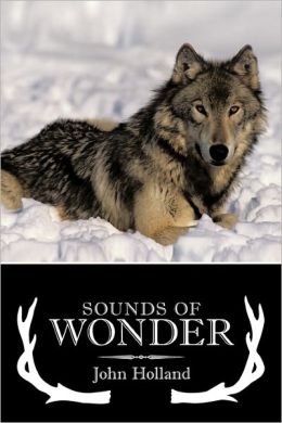 Sounds of Wonder