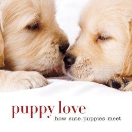 Puppy Love: How Cute Puppies Meet