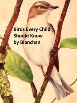 Birds Every Child Should Know, Illustrated