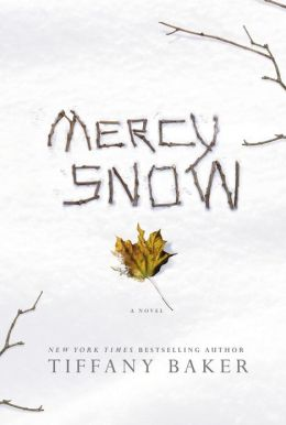 Mercy Snow: A Novel