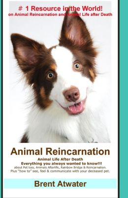 Animal Reincarnation: Everything You Always Wanted to Know! about Pet Reincarnation Plus How to Techniques to See, Feel and Communicate with Your Deceased Pet