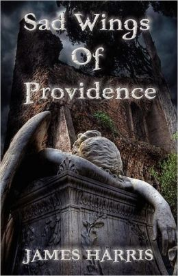 Sad Wings Of Providence